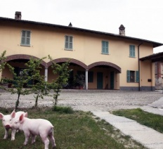 Cooperative of pigs' producers: guarantee of 100% Italian origin
